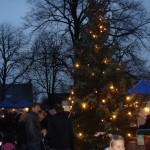 Wintermarkt De Wijk (19)